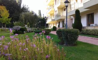 Botanica yard
