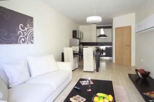 Apart2_living-room2